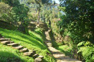 The Lost City Trek Colombia Fendaux