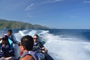Best diving in Santa Marta fendaux