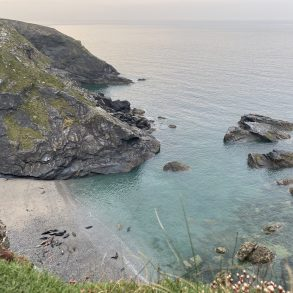 Where is the best place to find seals in Cornwall?
