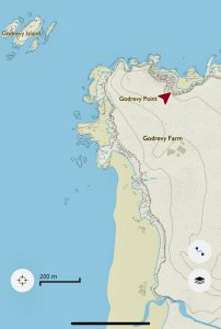 location of seals in Gwithian