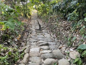 Minca archeological steps
